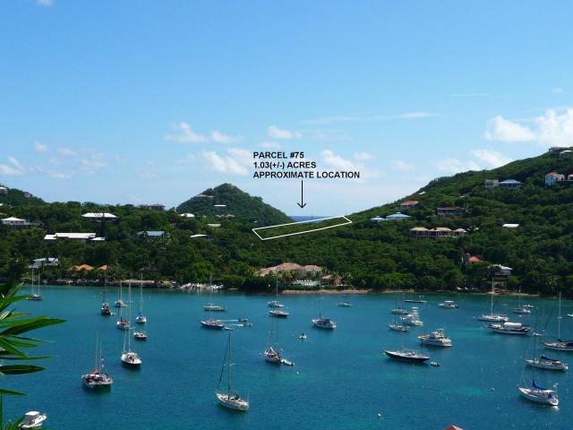Views of Great Cruz Bay harbor